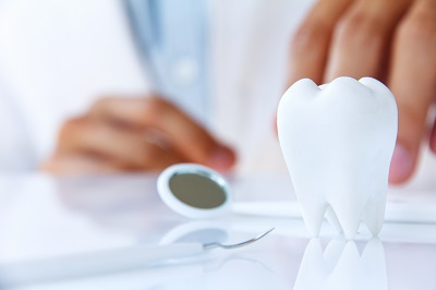 image of tooth displayed in dentist office